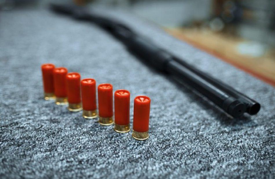 Publicly Traded Gun Companies